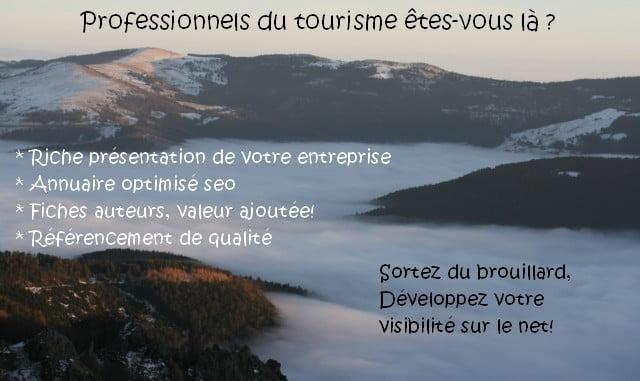 Référencement tourisme Vosges