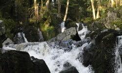 Cascade du Bouchot dans les Vosges