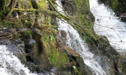 Cascades Vosges automne 2014