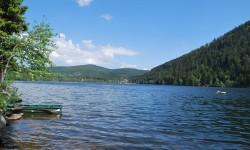 camping les jonquilles au bord du lac dans les Vosges.jpg