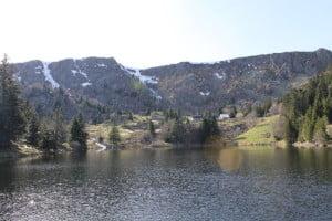 lac des truites dans les vosges