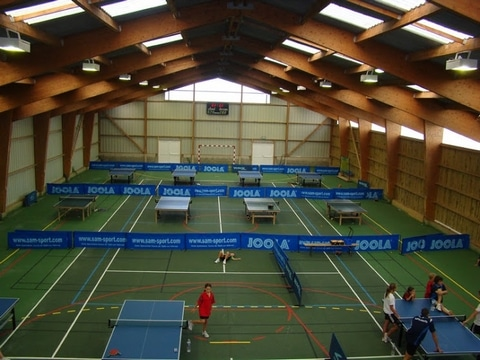 tennis de table chalets vosges.jpg