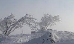 Martinswand chute de neige novembre 2015