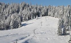 Faire du tourisme dans le massif des Vosges