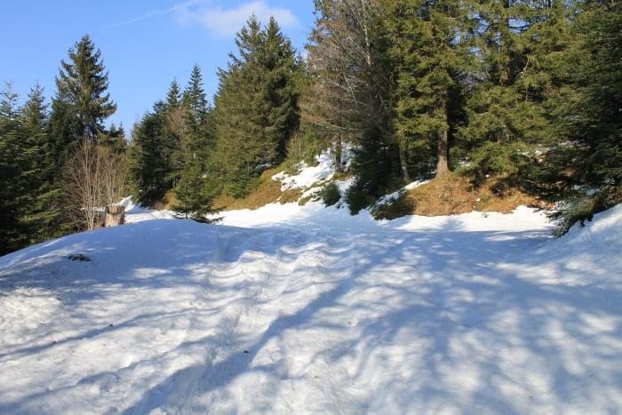 Sentier de randonnée raquettes à Gerardmer