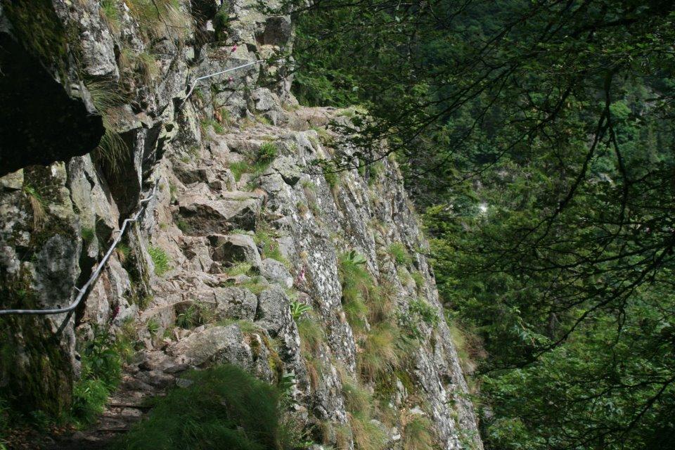 Vosges Tourisme Guide Annuaire Des Vacances En R 233 Gion