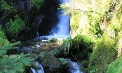cascades proches de Munster