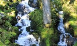 cascade sentier des roches