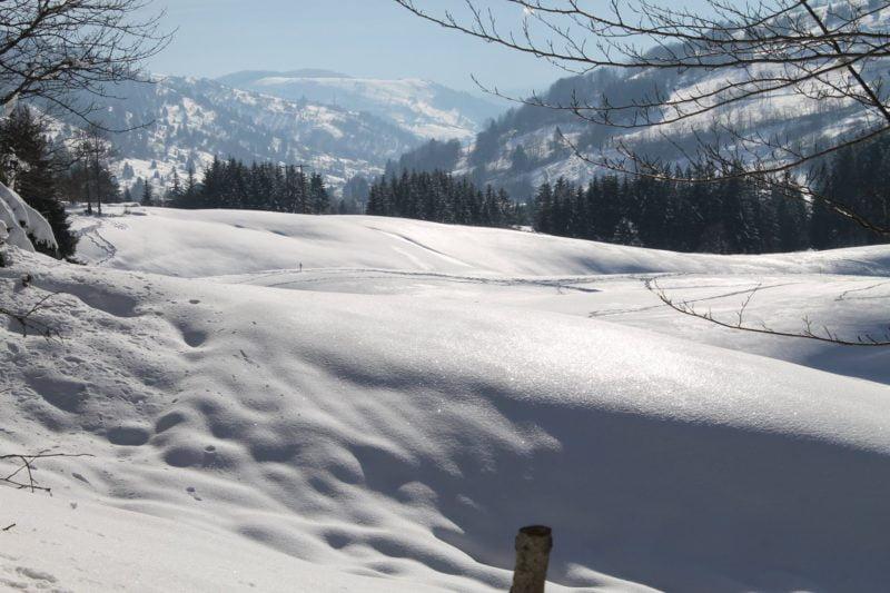 hiver avec de la neige dans les Vosges