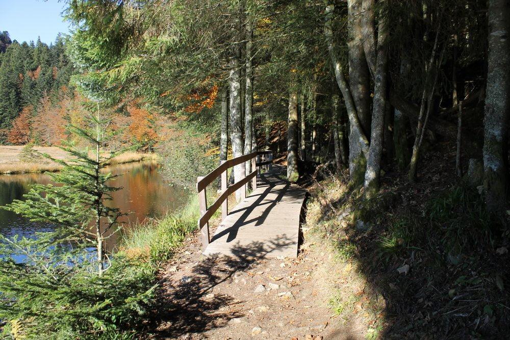 Sentier balade au lac de Lispach