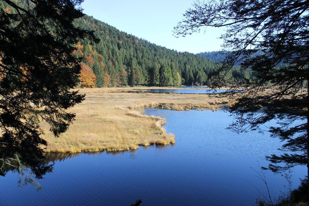 Lac à La Bresse