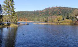 Tour du Lac de Lispach