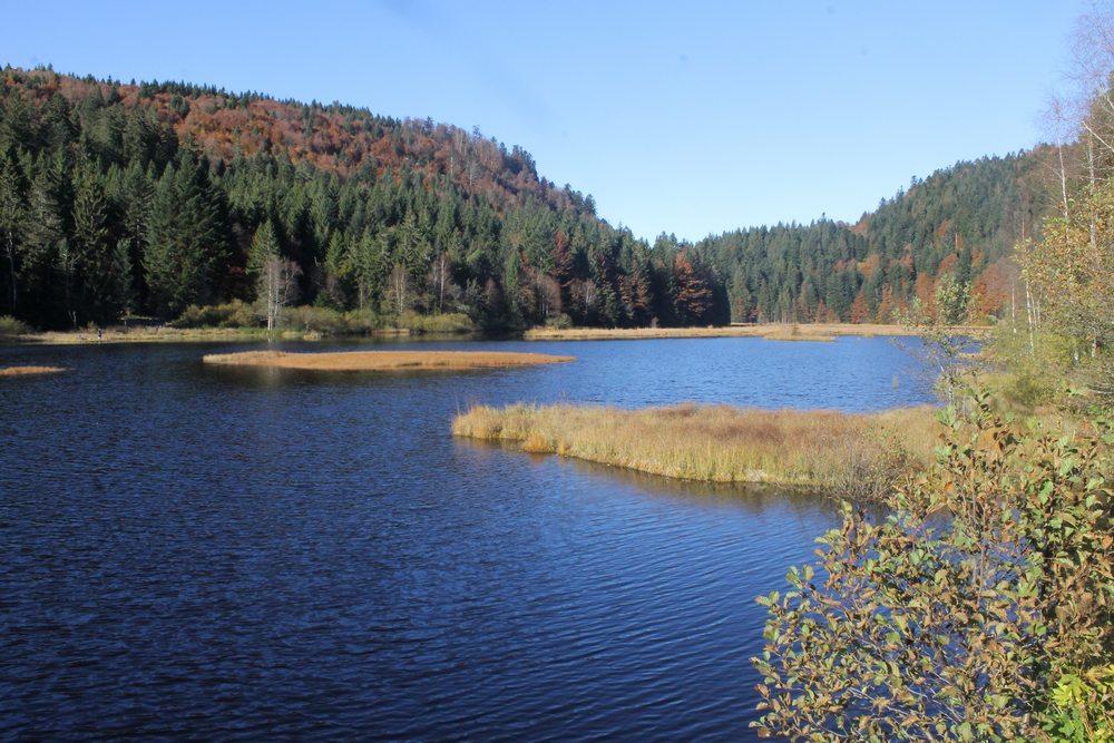 Lac randonnée à La Bresse Lispach