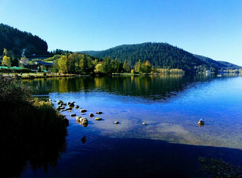 lac de gerardmer 88