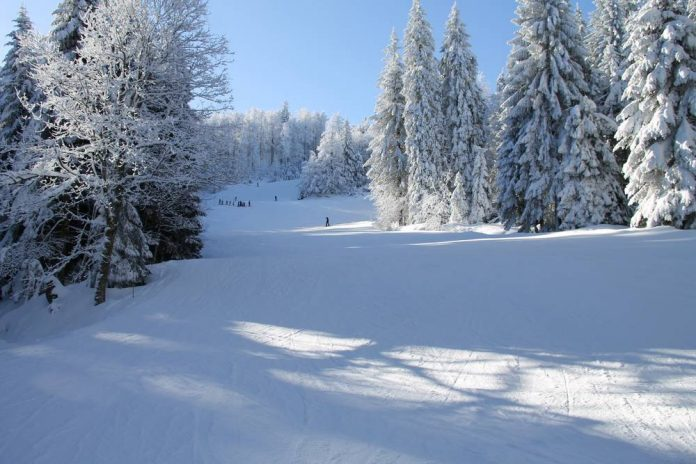 Y aura t-il de la neige dans les Vosges en 2021 ?