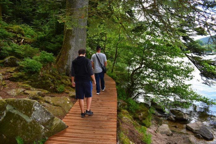 sentier lac gerardmer