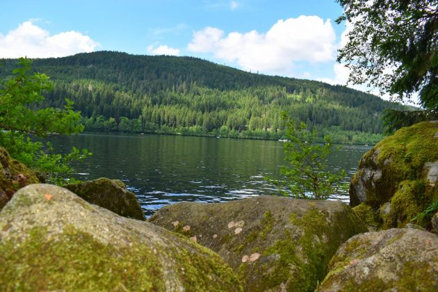 sentier sauvage gerardmer lac
