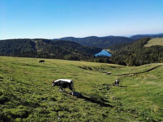 lac de la lande depuis le Kastelberg
